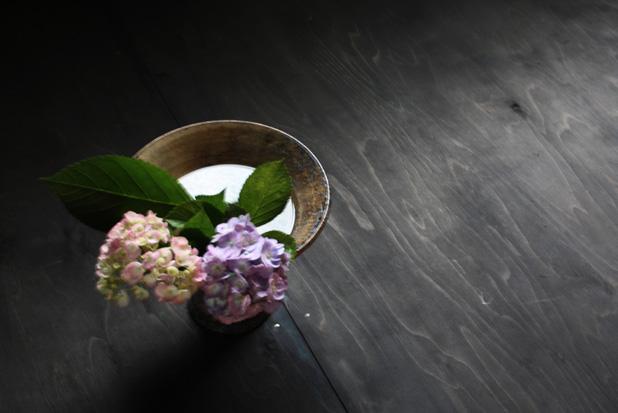 紫陽花アップ