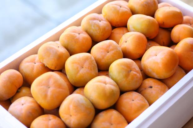 届いた渋柿